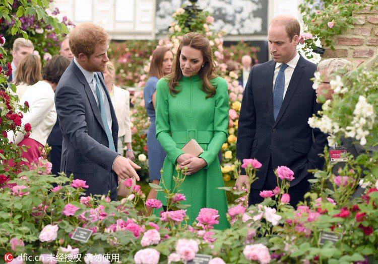 去年凱特王妃與威廉王子、哈利王子也參加這場盛大的切爾西花展。圖/擷自pinter...