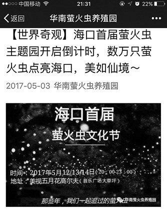海口「螢火蟲文化節」在陸環保團體力阻下緊急叫停。 圖/取自網路
