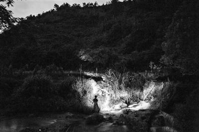 村民在夜間外出捕捉螢火蟲。 圖/取自網易
