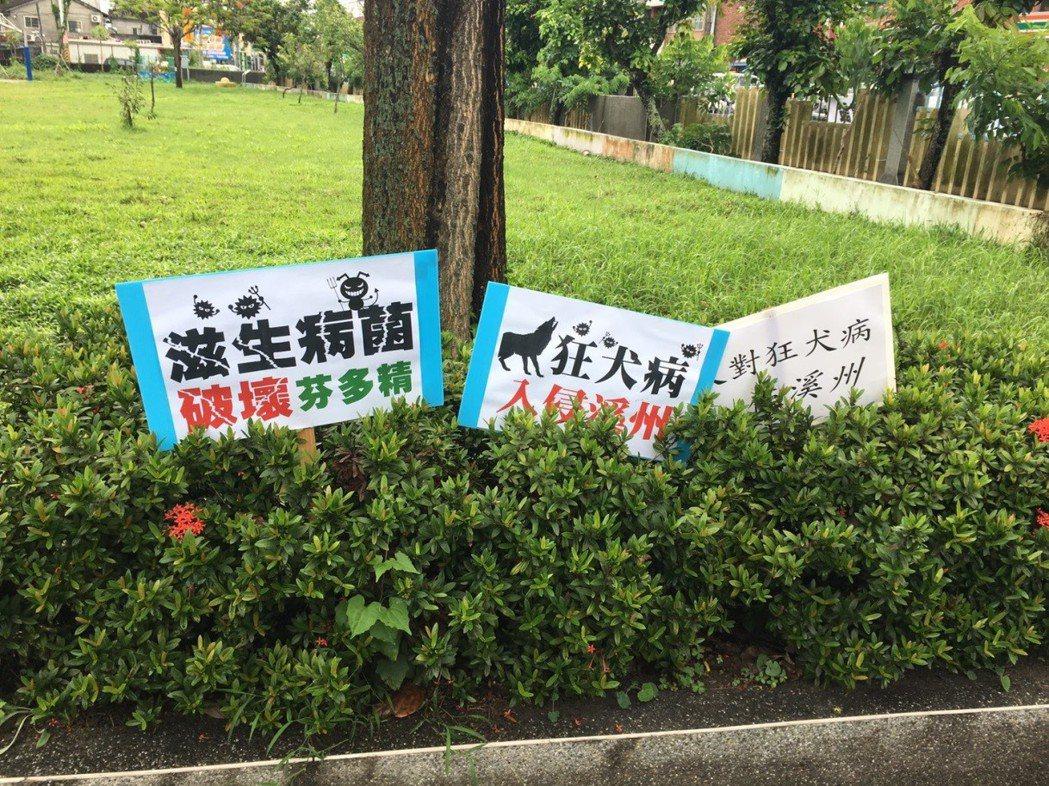 民意代表誤導民眾可愛動物教育園區會帶來狂犬病,但事實上,將遊蕩動物帶往收容單位、施打疫苗,是防止疫病擴散的方法。 圖/台灣防止虐待動物協會提供