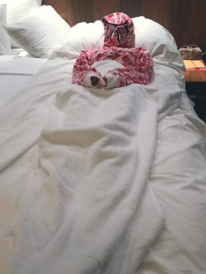 舒淇睡覺時竟然包住全身,祈求不再過敏。圖/摘自臉書