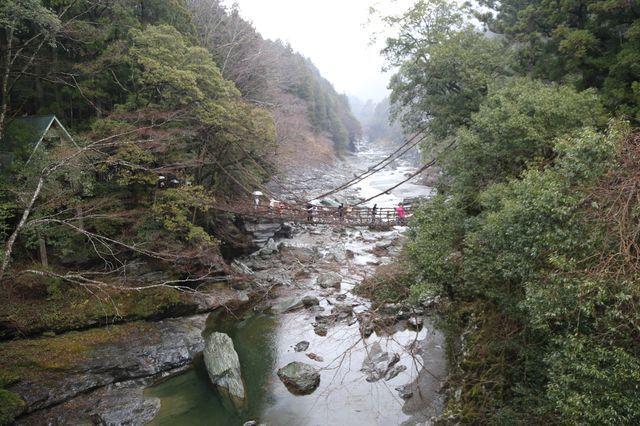 祖谷藤蔓吊橋