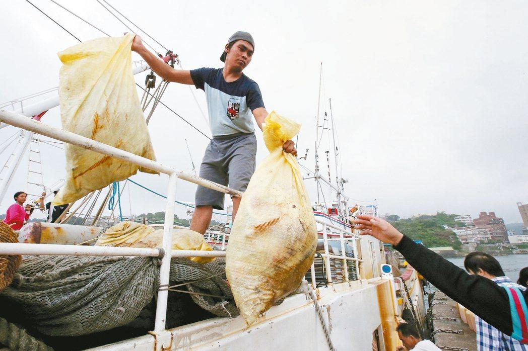 基隆正濱漁港,漁船將捕撈作業中撈起的垃圾集中裝袋運回岸上。 記者王騰毅/攝影