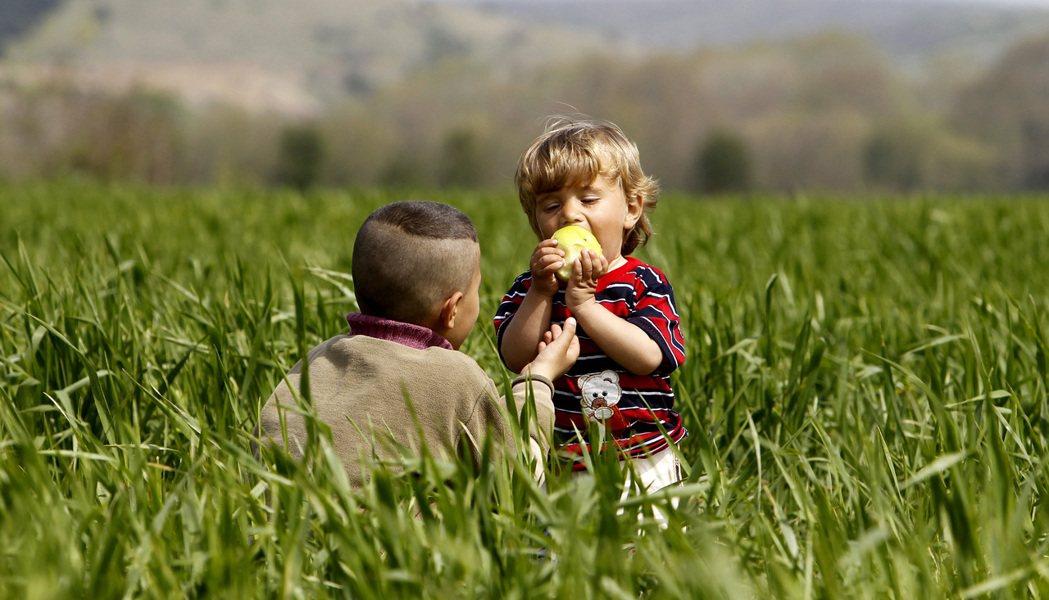 祝福這動蕩的世界,總有一天,會寧靜下來,如同小穆罕穆德手中的那只綠蘋果,散發出友...