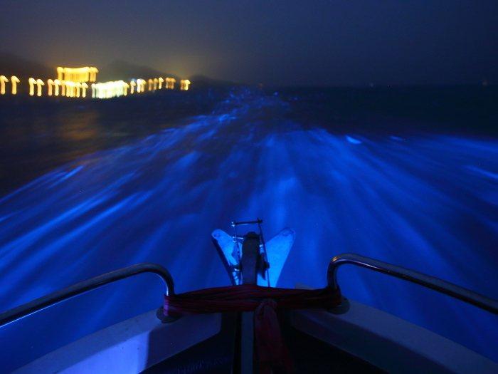 海上追藍眼淚是今年馬祖追淚的新體驗。 王樹欽/提供