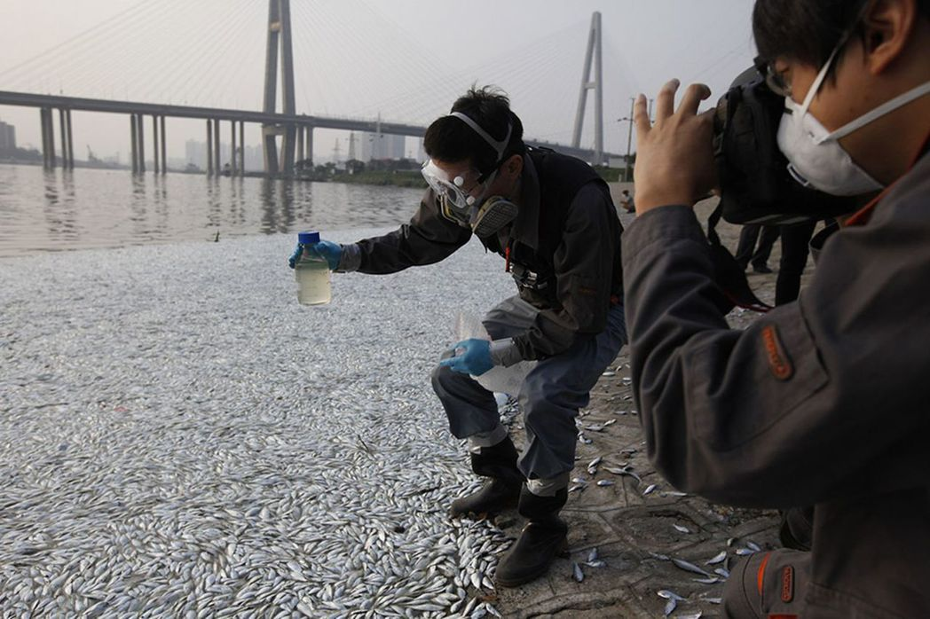 2015年8月20日,天津海河大閘岸邊出現大量死魚,水務局和環保部門的工作人員在...