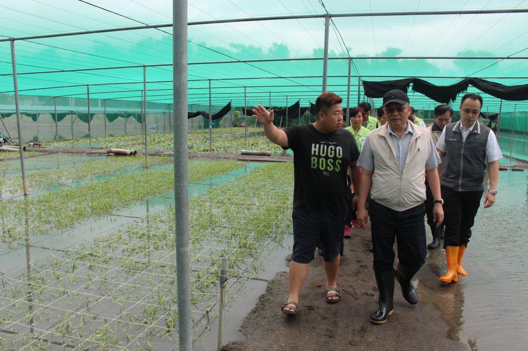 豪雨導致菜損漲價 林聰賢:政府要抓的是不該漲的