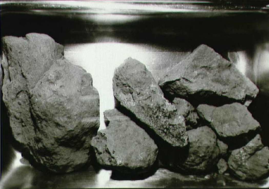 阿波羅11登月第二次任務,採集的月球樣本。 路透資料照片