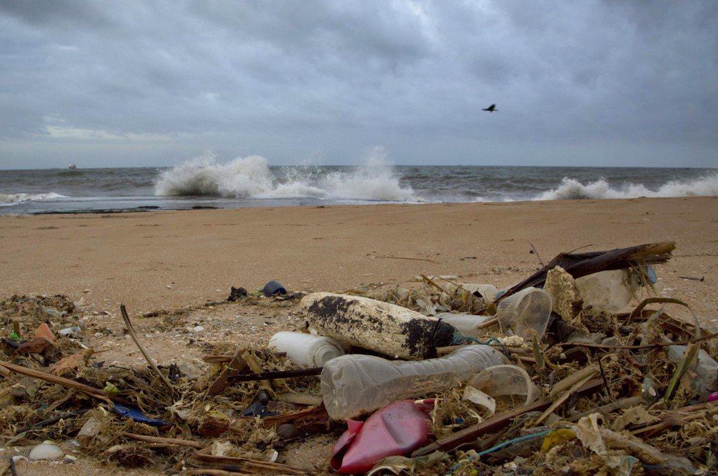 廢塑料垃圾2050年恐超過魚?圖為2015年8月13日,位於斯里蘭卡科倫坡以...