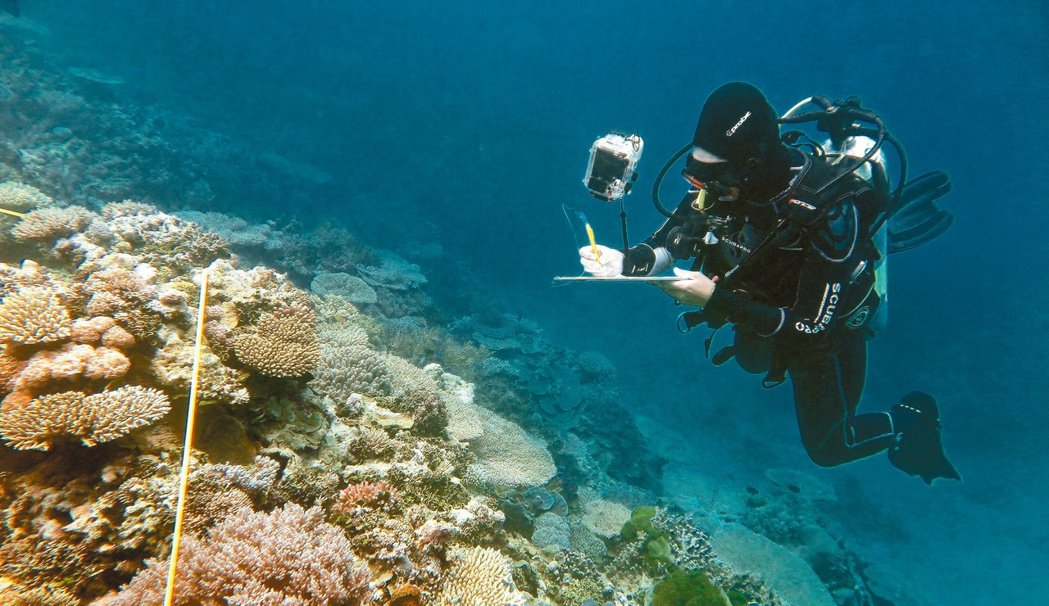 科學家二十九日證實,澳洲大堡礁珊瑚礁群遭遇歷來最大浩劫,今年死亡的珊瑚比過去多。...