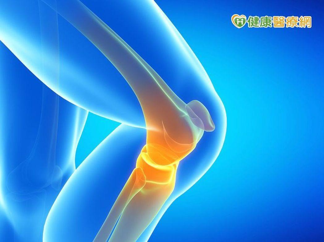 退化性關節炎要做復健運動 訓練核心肌群與下肢肌力