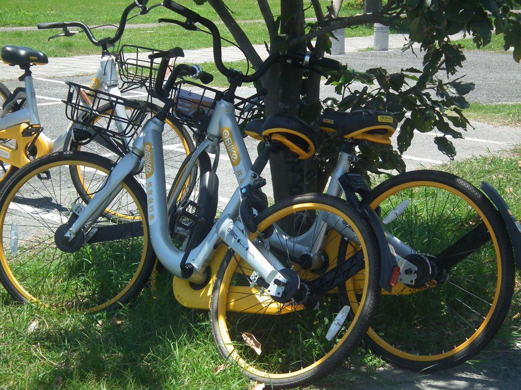 台東有oBike單車腳架遭破壞,只能靠在樹下停放。 本報資料照片