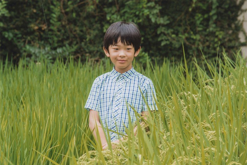 日本的悠仁親王在學校頗受女同學歡迎。圖/擷自dosuko.wikia