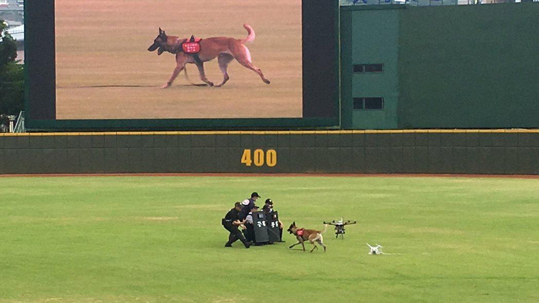 世大運出動攔截機打下無人機,並派出警犬嗅聞危安物品。記者李承穎/攝影
