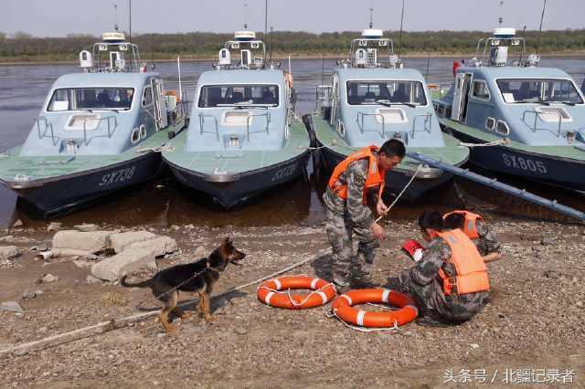 當三名解放軍正在工作時,汪星人「黑豹」似乎也想參與其中。圖/北疆紀錄者