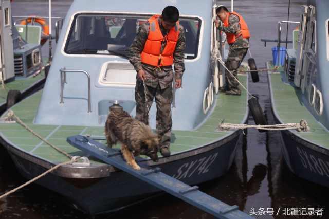 船艇一靠岸,解放軍們就牽著一隻隻汪星人下船活動身體。圖/北疆紀錄者