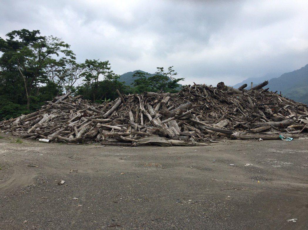 石門水庫已經累積9000立方公尺漂流木。記者鄭國樑/攝影