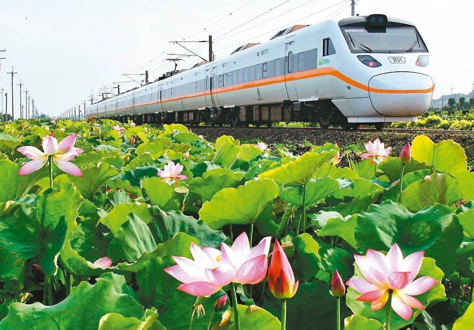 攝影玩家張文煥拍攝的通霄海線鐵路荷花田美景。 圖/張文煥提供
