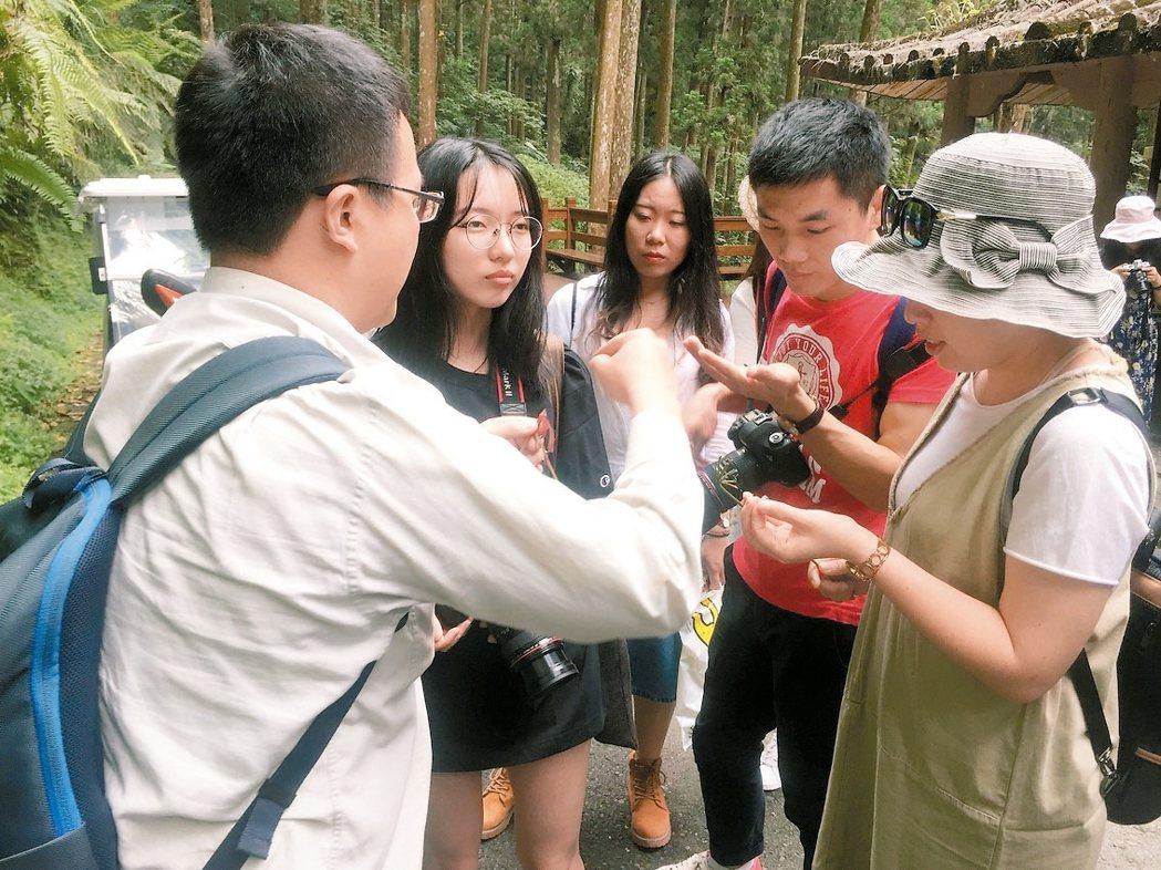 網紅到溪頭體驗森林療育旅程,對於特殊的動植物生態也會追問。 記者江良誠/攝影