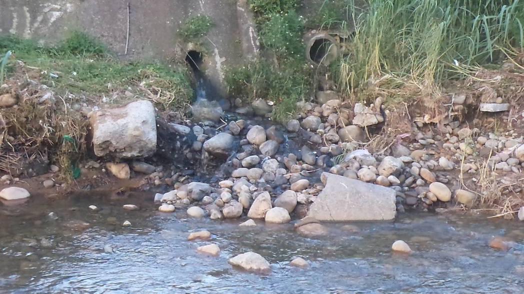 新北市五股坑溪排水孔外的石頭已被染到變成黑色。 圖/李婉鈺團隊提供