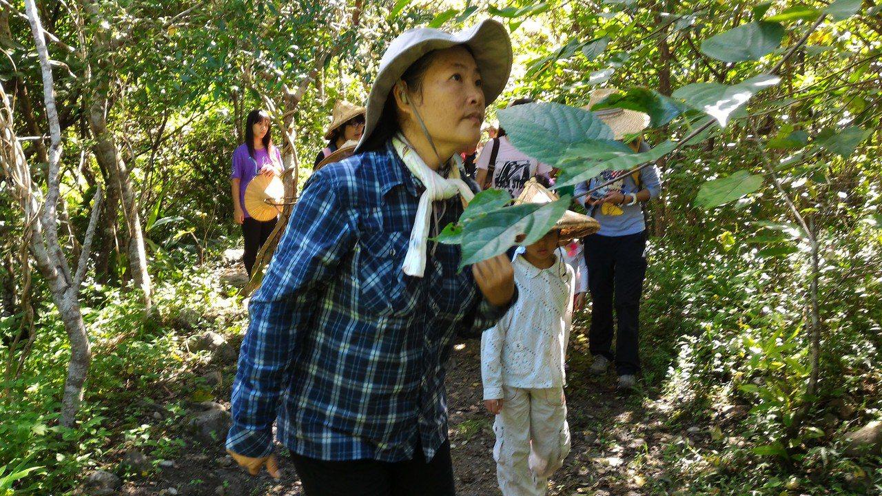 青陽生態園區女主人葉美青帶領孩童步道探索,親近大自然。圖葉美青提供