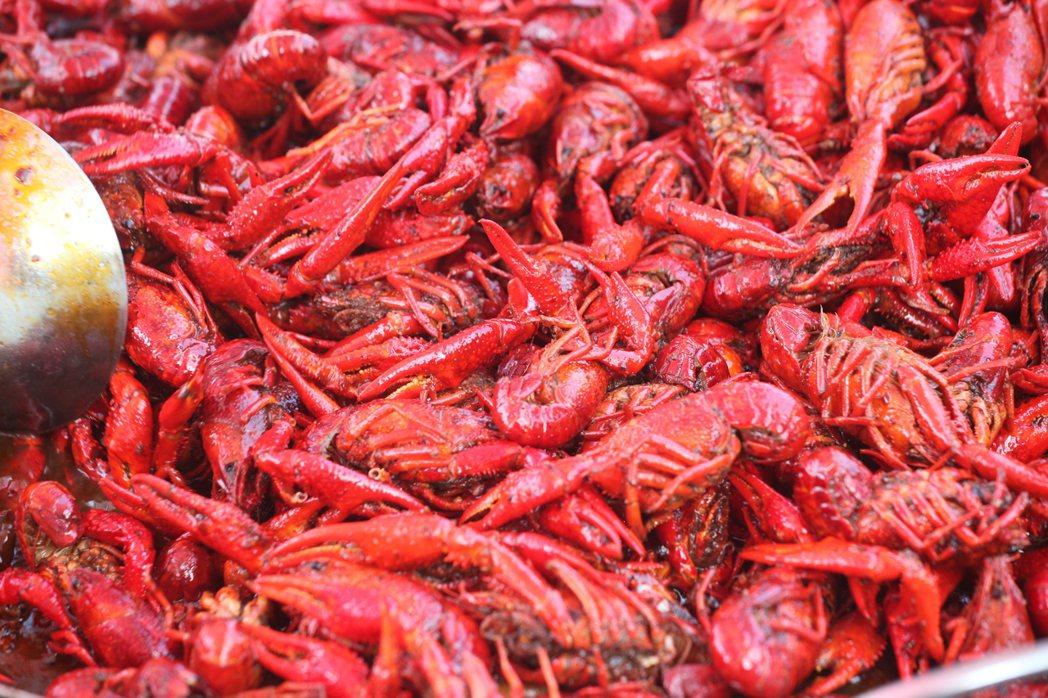 紅通通的小龍蝦適合辣炒。記者劉學聖/攝影