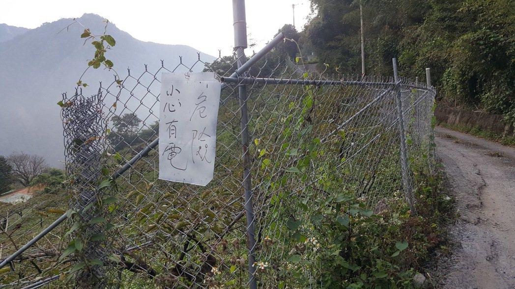 苗栗縣許多果園架設電網,阻絕獼猴侵害。圖/報系資料照