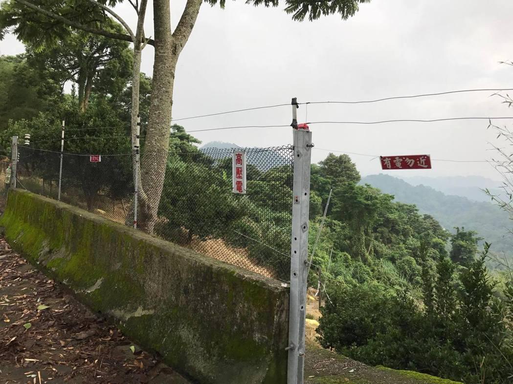 苗栗縣許多果園架設電網,阻絕獼猴侵害,有的電網有完善的警示。圖/黃姓農民提供