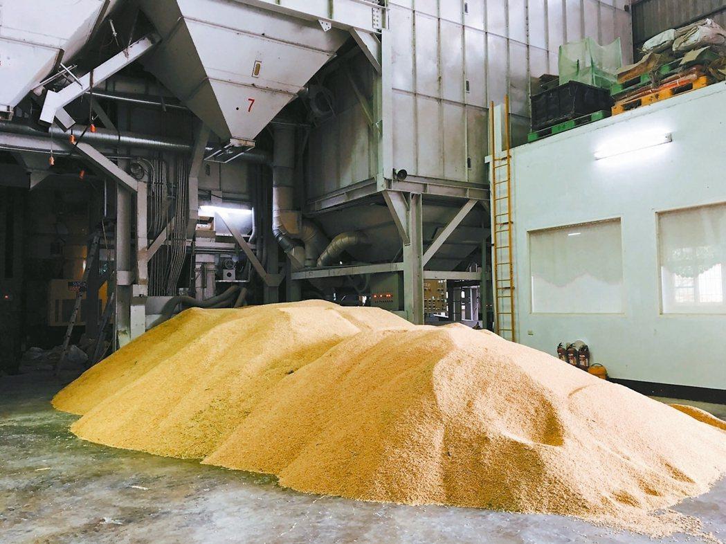 芳榮米廠庫存過量,有爆倉狀況。 記者鄭宏斌/攝影