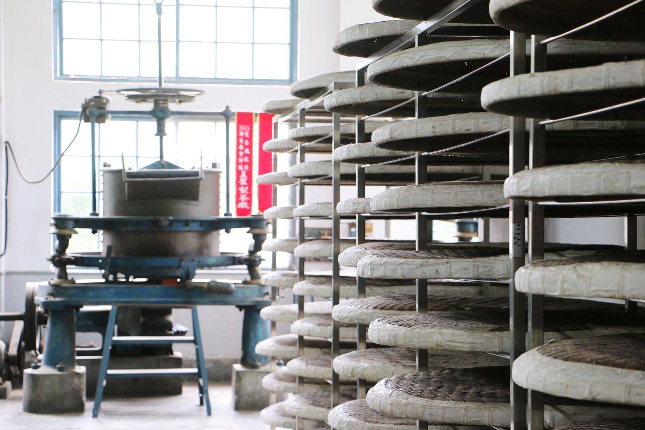 右側一排讓茶葉萎凋的竹簍,後方則是製茶機。