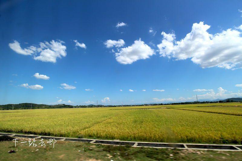 途中景色好似台灣鄉間。 攝影/賴勳毅