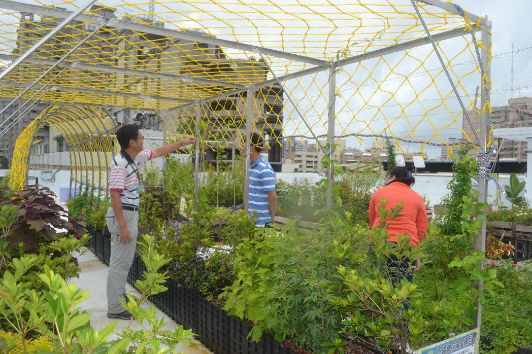 台南市環保局推動綠屋頂計畫,鼓勵闢空中花園,營造低碳、綠能、永續的城市。記者鄭惠...