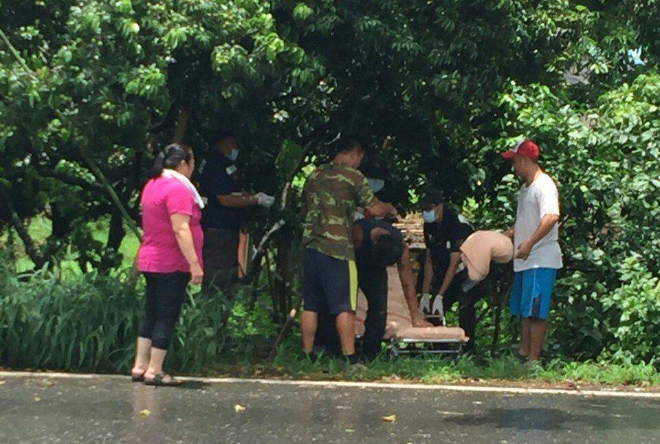 民眾在荔枝園下發現小貨車駕駛受傷倒地。 圖片/讀者提供