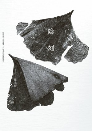 《陰刻》書影。 圖/木馬文化提供