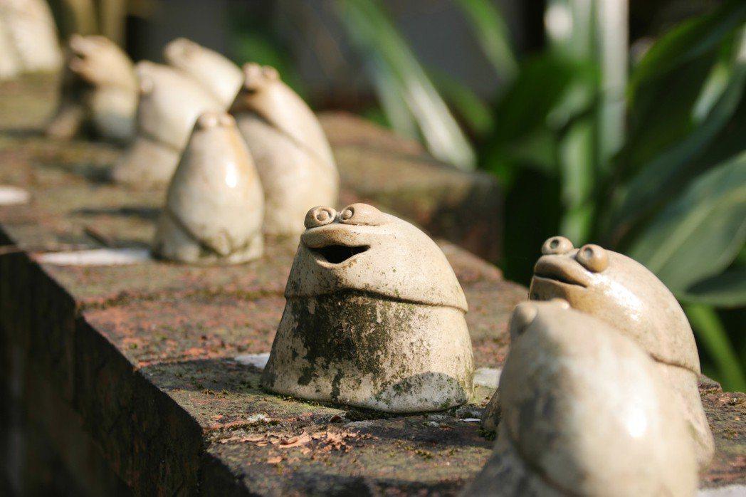 新北市石門區的阿里磅生態農場,保留原始林地,全台灣33種蛙類中,這邊就已發現19...
