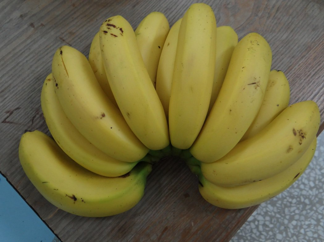 香蕉產地價每公斤剩7~8元,蕉農心在淌血。圖/本報資料照片