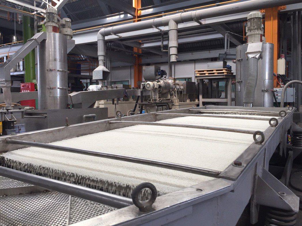 玉米澱粉為製作生物可分解塑膠原料。 記者郭宣彣/攝影