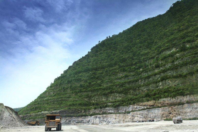 亞泥強調的階梯狀植生綠化成果,真的能夠讓生態環境復舊嗎?或只是讓山上看起來「綠綠...