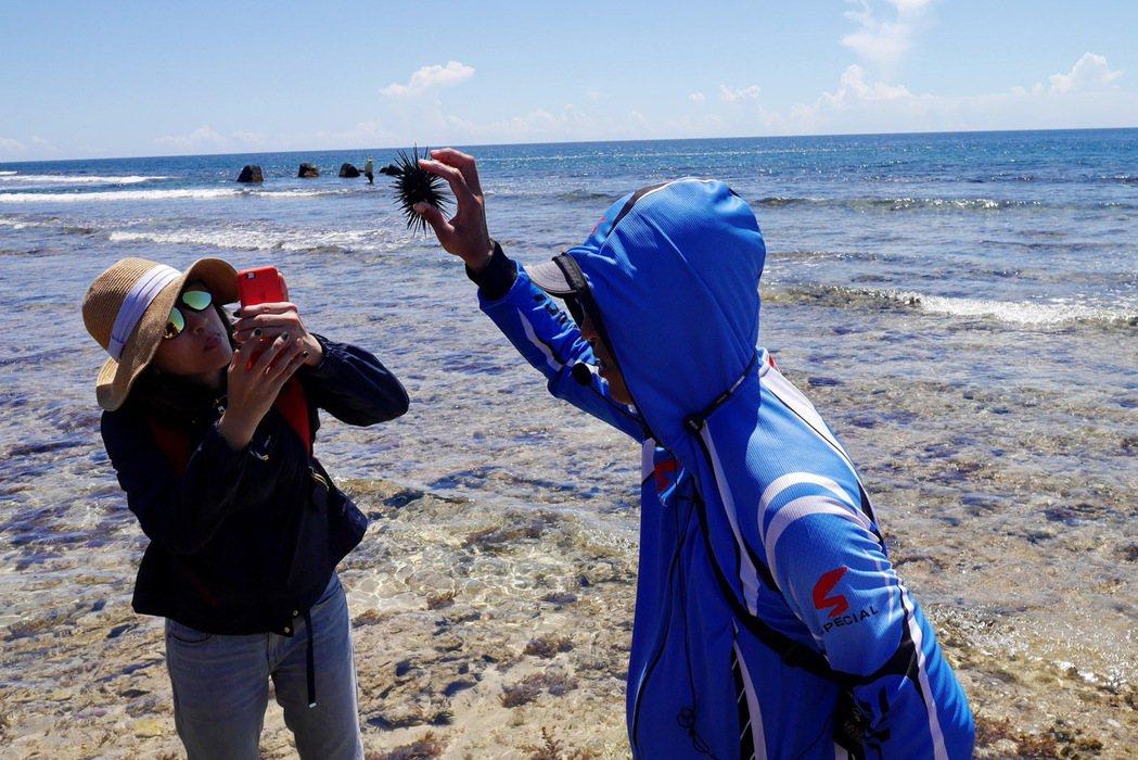 當地達人帶領的潮間帶導覽,透過詳細解說帶領遊客更進一步了解海洋生態。 記者陳威任...