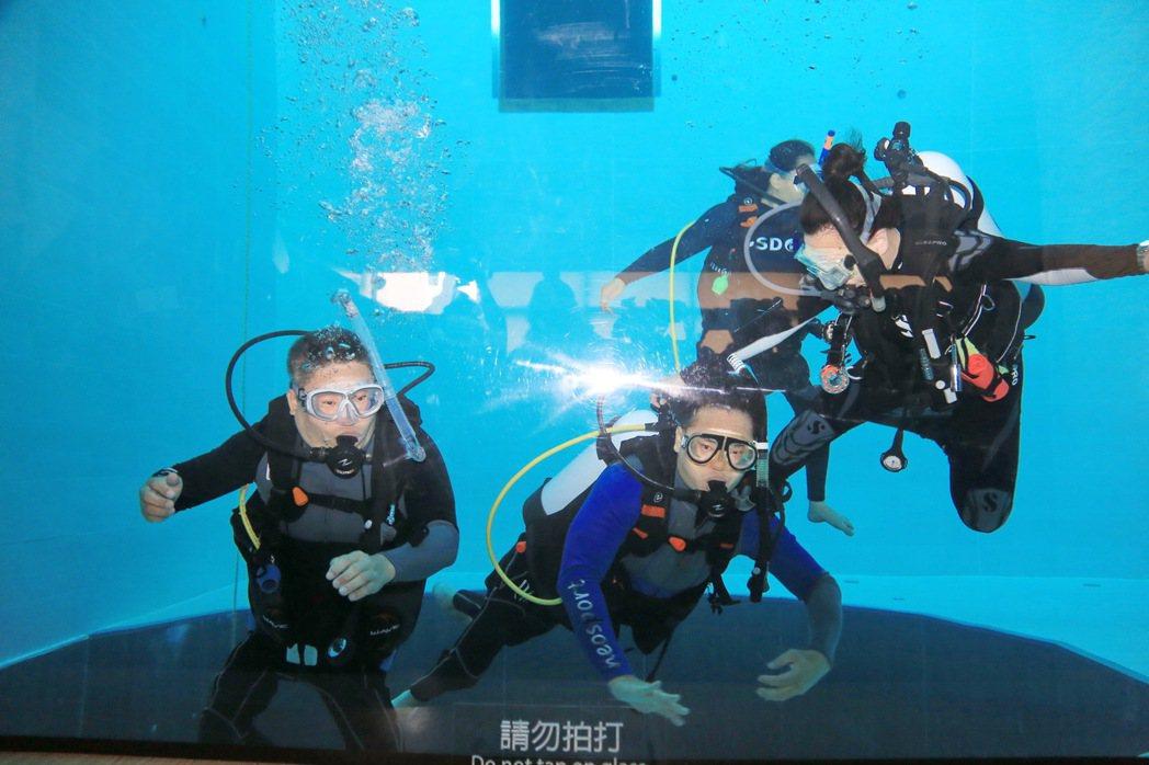 身障者潛水如魚得水。記者陳秋雲/攝影