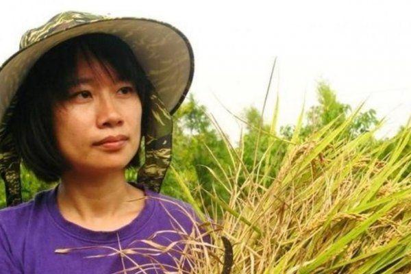北農總經理人選依舊由作家吳音寧接任。圖/聯合報
