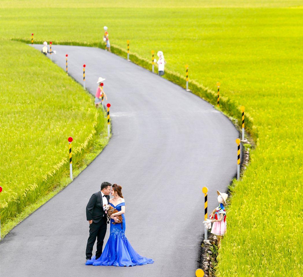 宜蘭縣冬山鄉三奇伯朗大道,吸引新人前來取景拍攝婚紗照。記者程宜華/攝影