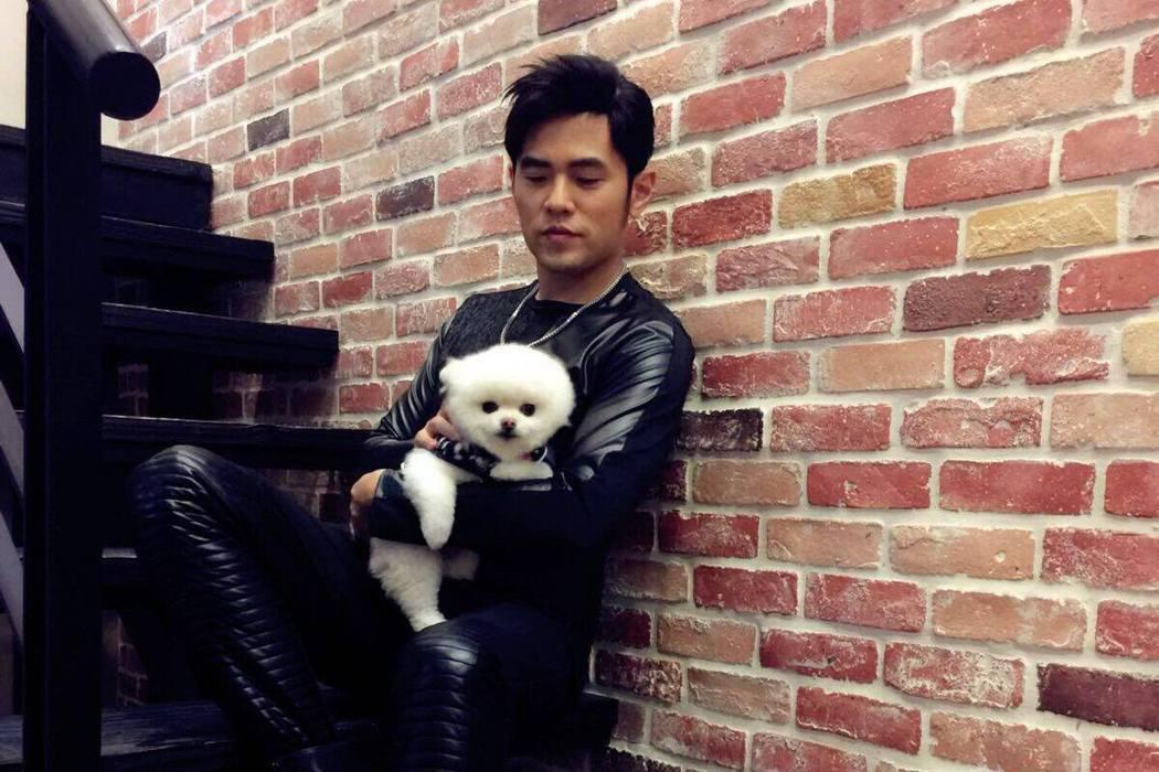 圖/擷自Machi Doggie Fashion & Coffee臉書