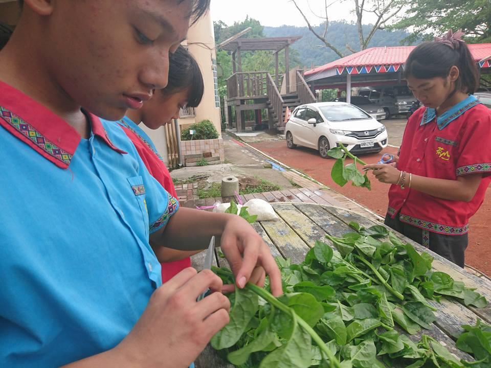 學生們利用在校園栽種採收的蔬菜從事料理。圖/鄭佩茜提供