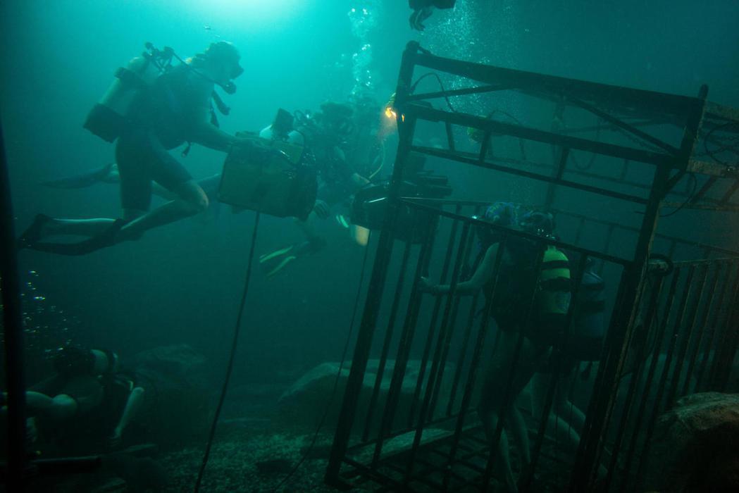 「深海鯊機」中的水底主景,其實有很多工作人員偷偷在裡面「小解」。圖/威視提供