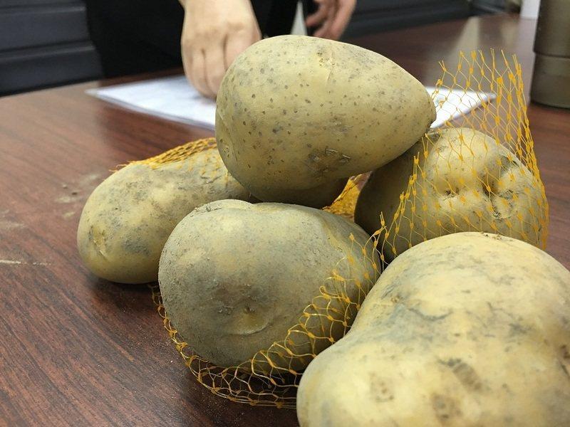 日前傳出抗高溫基改馬鈴薯正預備扣關進口,引起民眾關注,衛福部表示,將嚴加審查,沒...