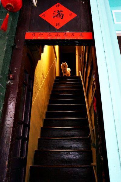 沒有招牌,只有兩張紅聯與陡峭的木製樓梯。(林郁姍/攝)