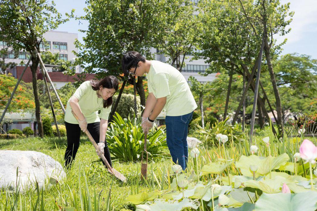 嘉南藥理大學環管系志工團學生環境土壤採樣實作。圖/嘉大提供
