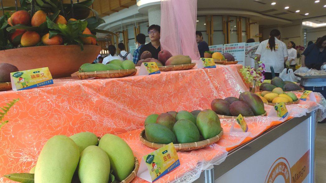 「2017台灣芒果季-台南國際芒果節」上午在走馬瀨農場揭幕,會場展示各種芒果品種...
