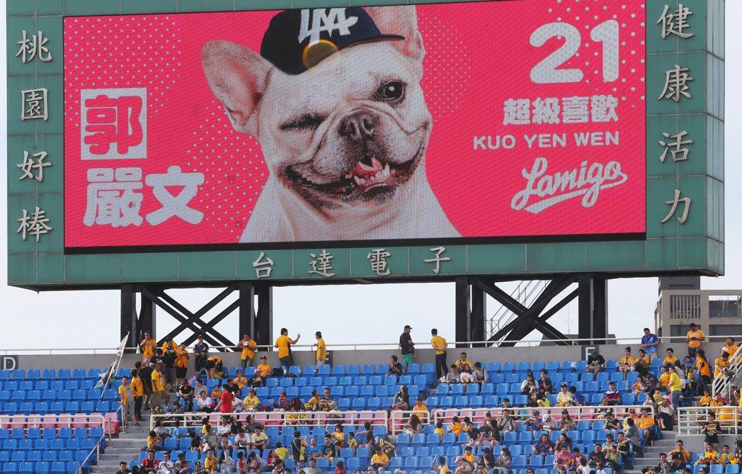 中職/桃猿對中信兄弟象晚上在桃園國際棒球場舉行,由於今晚是寵物趴,球員圖卡也換成...